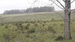 Campo cerca de Pueblo Eden - Consulte !!!!!!