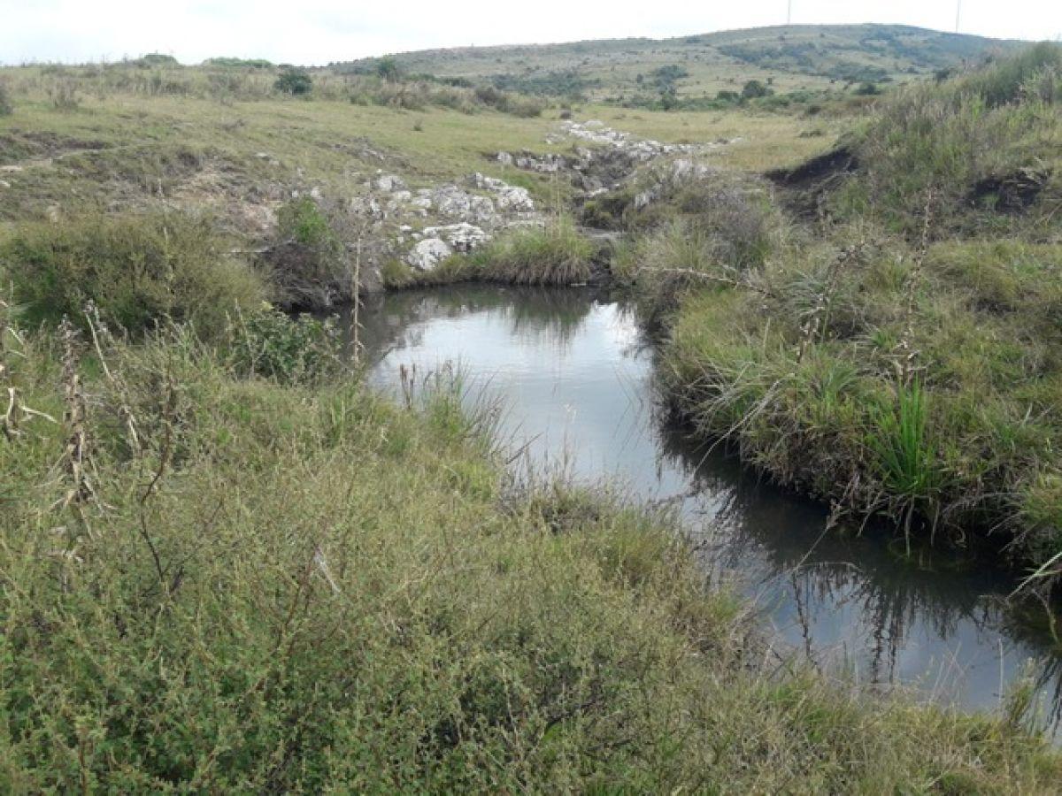 Campo 39 has a 55 km de Punta del Este