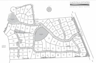 Terreno de 5471 m2 en LAGUNA STATES MANANTIALES