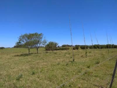 Chacra en Rincón de José Ignacio, la zona más codiciada