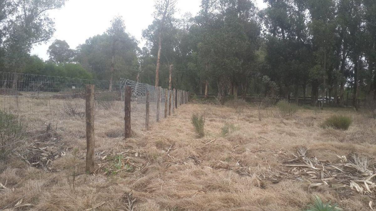 Terreno ID.298 - Terreno en El Tesoro. Camino Eguzquiza, a 4 minutos del puente de La Barra.