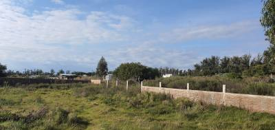 Terrenos 1800 m2 MURO LADRILLO REV PIEDRA- PUNTA DEL ESTE
