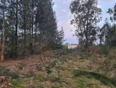 Terreno 900 m2 Miramar Acre Frentista