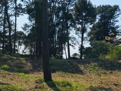 Terreno 1339 m2 , en Jardines de Cordoba - Punta del Este