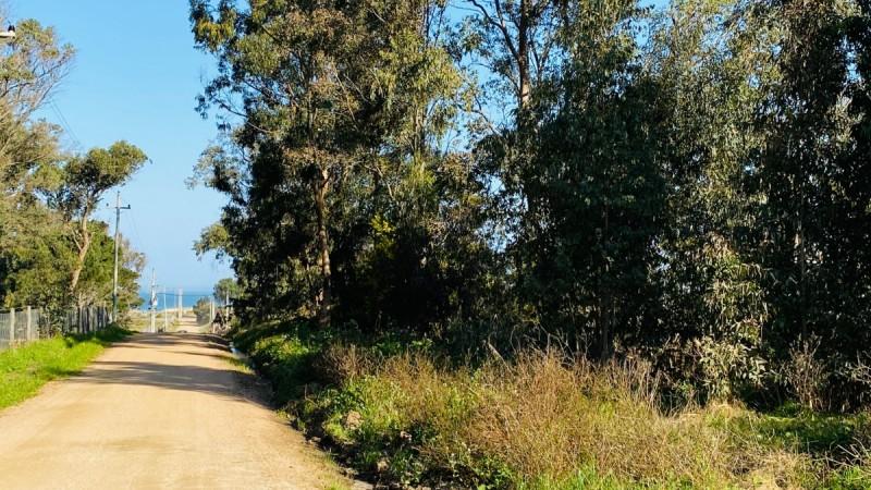 Terreno ID.304 - Venta terreno único en Balneario Buenos aires a 1 cuadra del mar