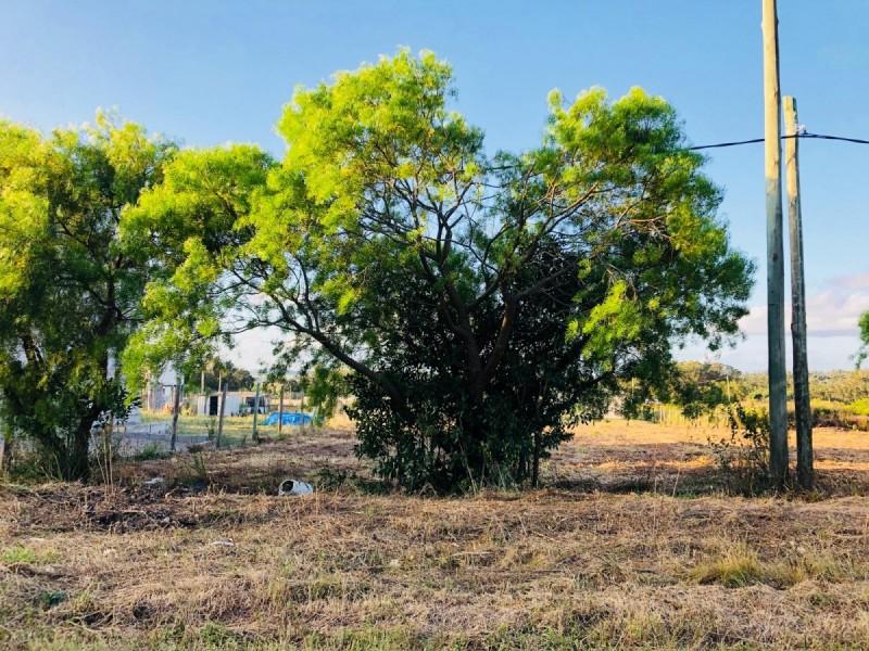 Terreno ID.327 - Venta terrenos en Miramar Acres, El Tesoro