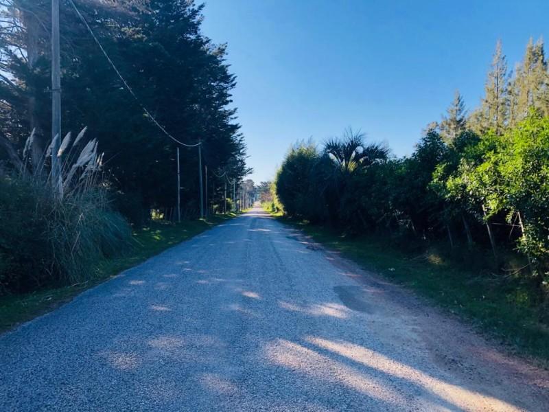 Terreno ID.368 - Terreno en Punta Ballena para fraccionar