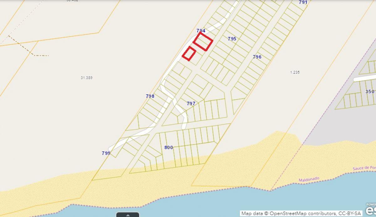 Terreno ID.298019 - Terreno en Sause de Portezuelo