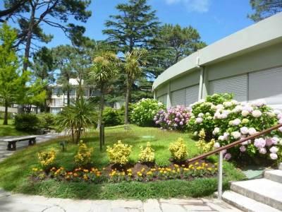 Apartamento en Venta en Punta del Este, Mansa a 300 mts de la playa en muy lindo complejo con servicios