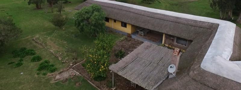 Campo 96 Has al Norte de José Ignacio, Olivos, gran casa y una ubicación privilegiada