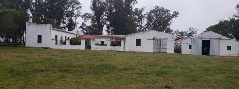 Venta de campo ganadero en Rocha con abundante agua, 900 Has