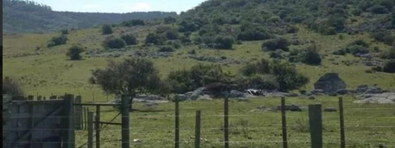Campo en Venta en Uruguay, Lavalleja  a pocos km de Minas
