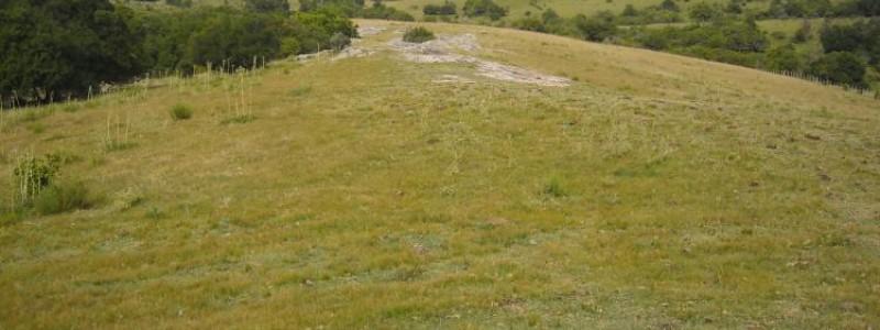 Campo en Uruguay, Garzón
