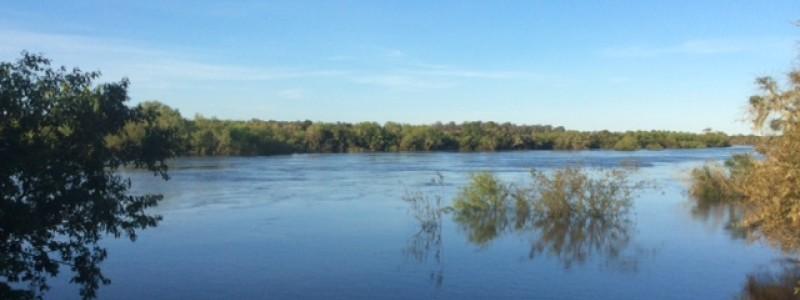 Campo de 415 Has en 33, muy buena agua Rios Olimar y Cebollatí