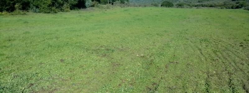 MALDONADO Campo con 150 Has Ganaderas en Aigua, 70 Kms de Punta, Serrano, Pintoresco, con instalaciones