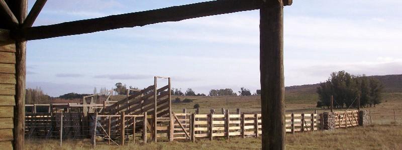 Campo en venta en Lavalleja