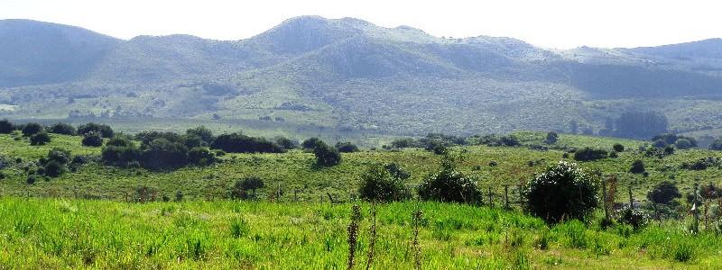 Campo en Venta en Maldonado a 20 km de Pueblo Edén