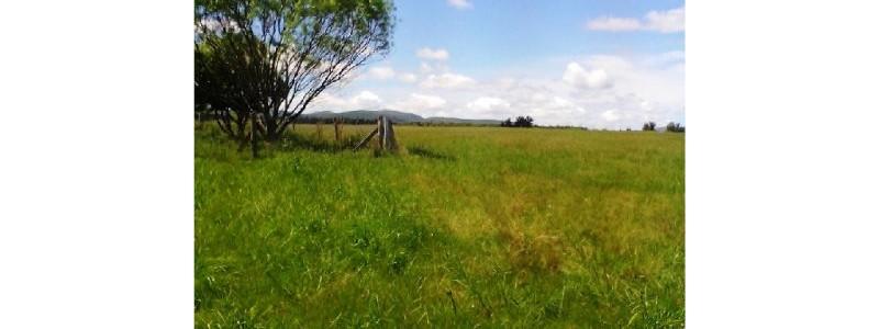 Campo en Uruguay - Maldonado - Cerros Azules