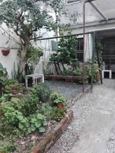 Venta casa en Cordón Norte, patio parrillero y estacionamiento para 3 autos